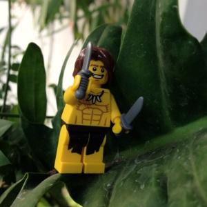 Tarzan lagi berburu makanann :)