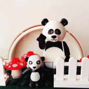 Ibu dan anak Panda :)